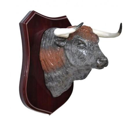 Metopa bull head