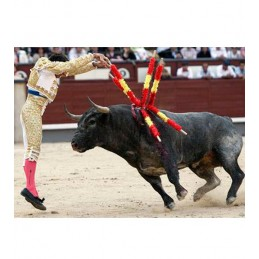 Bullfighter professionals banderillas
